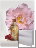 Still Life of Bottles and Roses Posters by Diane Miller