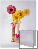 Gerbera Daisies in Antique Vase Print by Diane Miller