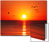 Gulls Reign over Tranquil Sunset Prints by Rich LaPenna
