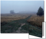 Pathway on a Foggy Day Prints by Paul Hernandez