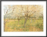Orchard in Blossom Poster by Vincent van Gogh