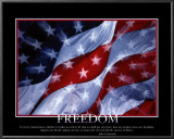Patriotic Freedom Poster