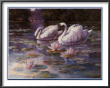 Swans and Bridge Prints by T. C. Chiu