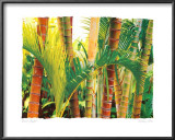 Bamboo Ballet Prints by Maureen Love