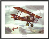 Sopwith Camel, 1917 Print by Alfred Owles