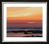 Sunset And Flight Limited Edition Framed Print by Pam Carter