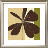Chocolate Flower Burst Prints by Debbie Halliday