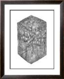 Abstract Black Hexagon Room Prints by Ryuichirou Motomura