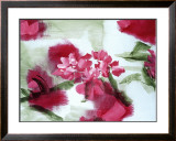 Rose Prints by Annemiek De Beer
