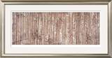 Growth Lines Limited Edition Framed Print by Isabel Lawrence