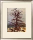 Oak in the Snow Framed Giclee Print by Caspar David Friedrich