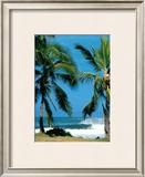 Spot d'Haleiwa Print by Sylvain Cazenave