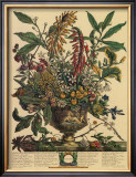 January Posters by Robert Furber