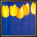 Yellow Tulips Prints by Teo Malinverni