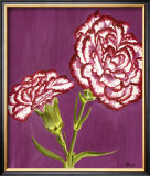 Purple and White Carnations Posters by Elise Ferguson