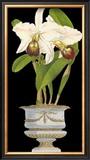 Orchids in Silver II Art