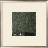 Park Framed Giclee Print by Gustav Klimt