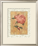 Antique Peony II Posters by Linda Hanly