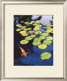Koi Pond I Poster by Maureen Love