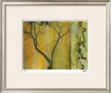 Golden Echoes II Limited Edition Framed Print by M.J. Lew