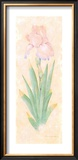 Iris Soliloquy I Prints by Nancy Kaestner