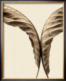 Turning Leaves II Print by Jeff Friesen