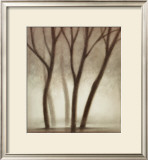 Forest II Prints by Hess