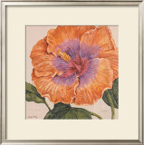 Island Hibiscus II Posters by Judy Shelby