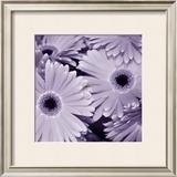 Bunch of Flowers I Art by Tony Koukos