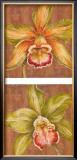 Aloha Beauty Petites Posters by Judy Shelby