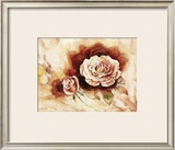 Rose Shadow I Prints by Karin Valk