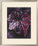 Heuchera After Rain Print by Sue Warner