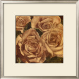 Rose Cluster II Prints by Linda Hanly