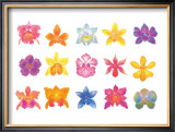 Flower Blossom with Smile Framed Giclee Print by Miyuki Hasekura