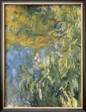 Iris, 1914-1917 Art by Claude Monet