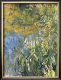 Iris, 1914-1917 Arte por Claude Monet
