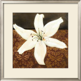 White Lily Art by Tamara Wright