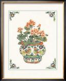 Geraniums Prints by Ann McEachron
