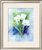 White Narcissus Print by Franz Heigl