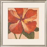 Island Hibiscus I Art by Judy Shelby