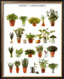 Aromatic Garden Posters