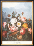 Group of Roses Prints by Dr. Robert J. Thornton