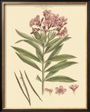 Blushing Pink Florals III Posters by  John Miller (Johann Sebastien Mueller)
