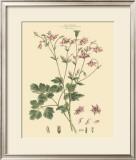 Blushing Pink Florals IX Prints by  John Miller (Johann Sebastien Mueller)