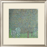 Roses under the Trees Posters by Gustav Klimt