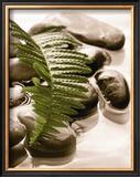 Spring Retreat I Posters by Christine Elizabeth