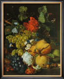 Fruits, Flowers and Insects Art by Jan van Huysum