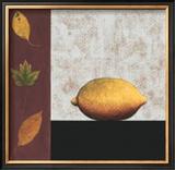 Lemon and Leaves Poster by John Boyd