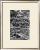 Garden Respite I Poster by Laura Denardo