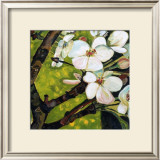 Blossom Rhapsody II Prints by Mary Mclorn Valle